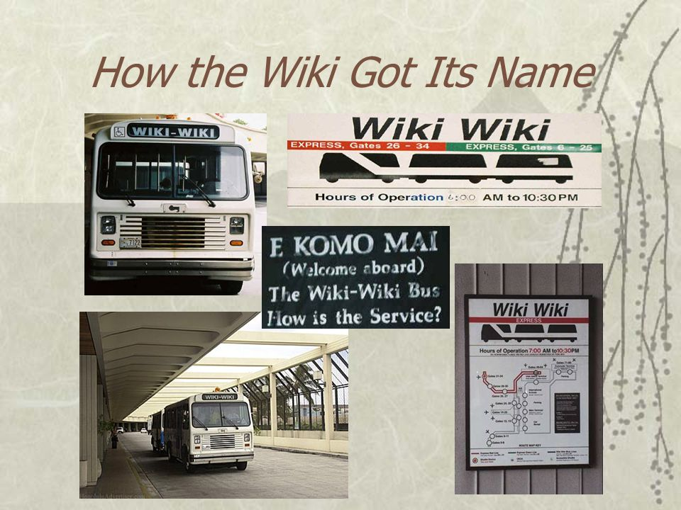 How the Wiki Got Its Name  Wiki is the Hawaiian word meaning quick , fast , or to hasten .