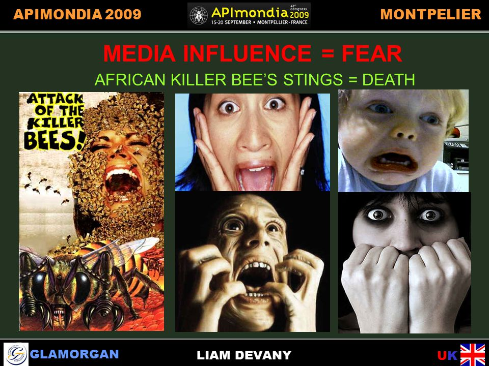 GLAMORGAN UKUK APIMONDIA 2009MONTPELIER LIAM DEVANY AFRICAN KILLER BEE'S STINGS = DEATH MEDIA INFLUENCE=FEAR