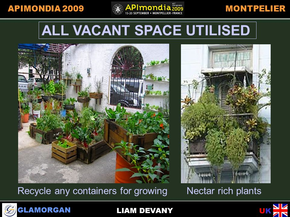 GLAMORGAN UKUK APIMONDIA 2009MONTPELIER LIAM DEVANY ALL VACANT SPACE UTILISED Recycle any containers for growingNectar rich plants