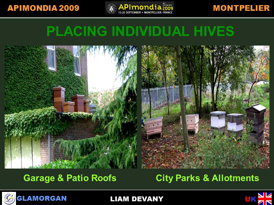 GLAMORGAN UKUK APIMONDIA 2009MONTPELIER LIAM DEVANY PLACING INDIVIDUAL HIVES Garage & Patio RoofsCity Parks & Allotments PLACING IDIVIDUAL HIVES