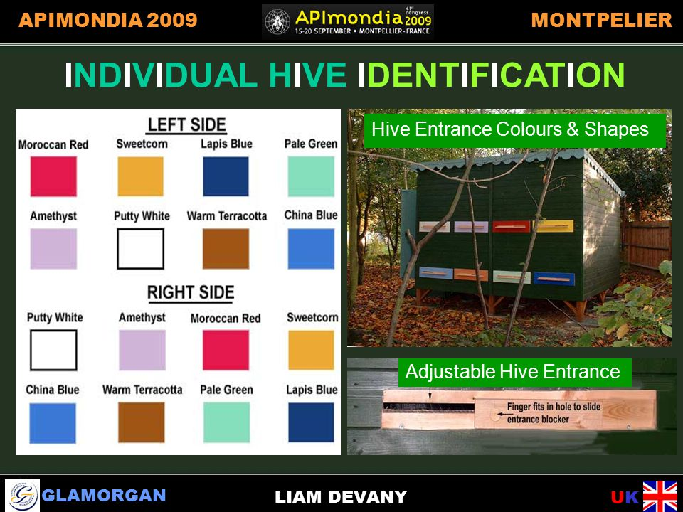 GLAMORGAN UKUK APIMONDIA 2009MONTPELIER LIAM DEVANY INDIVIDUAL HIVE IDENTIFICATION Adjustable Hive Entrance Hive Entrance Colours & Shapes INDIVIDUAL HIVE IDENTIFICATION