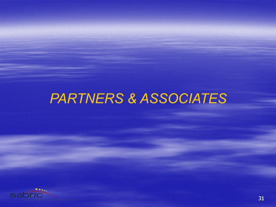 31 PARTNERS & ASSOCIATES