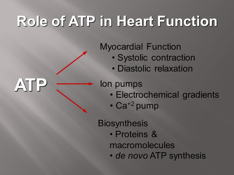 Role of ATP in Heart Function Ion pumps Electrochemical gradients Ca +2 pump ATP Myocardial Function Systolic contraction Diastolic relaxation Biosynt
