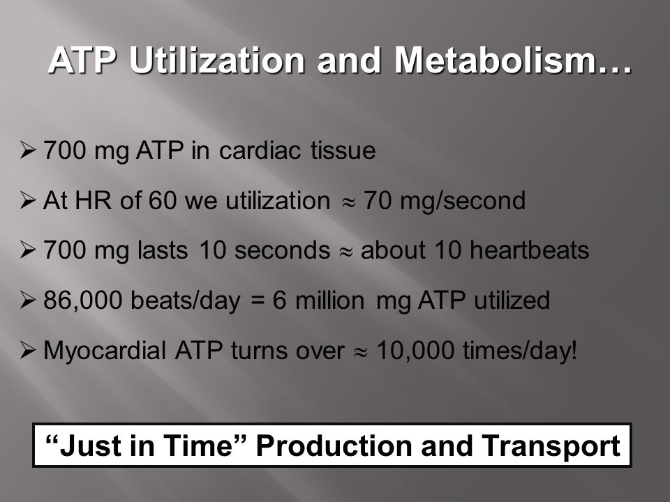 ATP Utilization and Metabolism…  700 mg ATP in cardiac tissue  At HR of 60 we utilization  70 mg/second  700 mg lasts 10 seconds  about 10 heartb