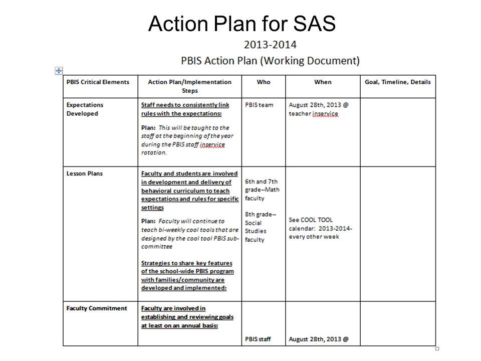 Action Plan for SAS