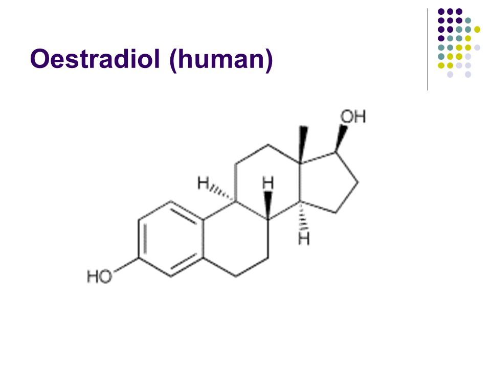 Oestradiol (human)