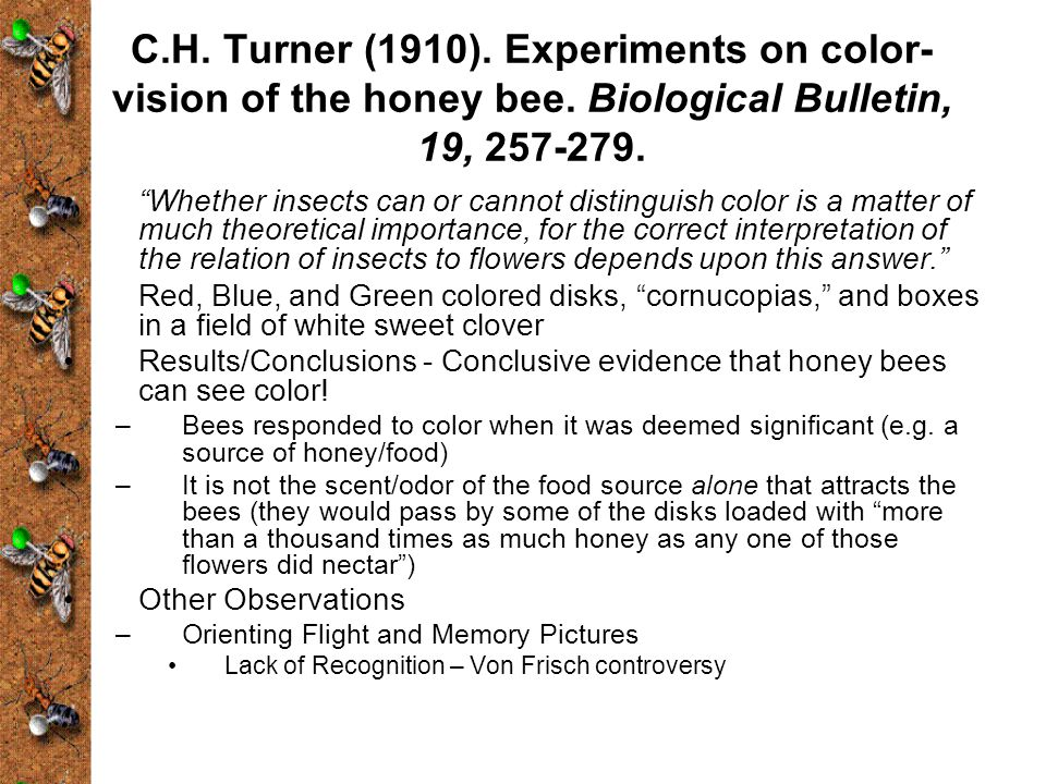C.H.Turner (1910). Experiments on color- vision of the honey bee.