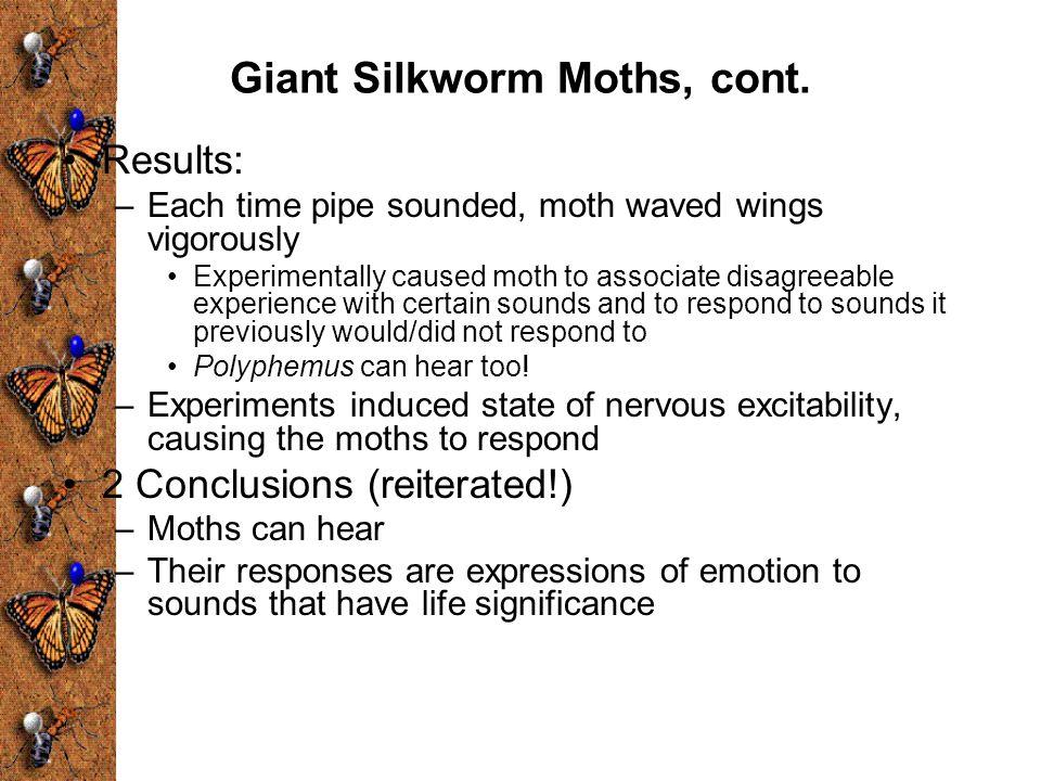 Giant Silkworm Moths, cont.