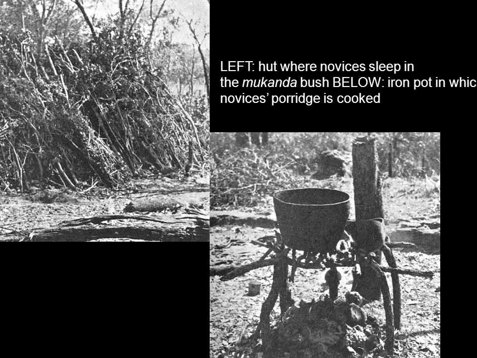 LEFT: hut where novices sleep in the mukanda bush BELOW: iron pot in which the novices' porridge is cooked