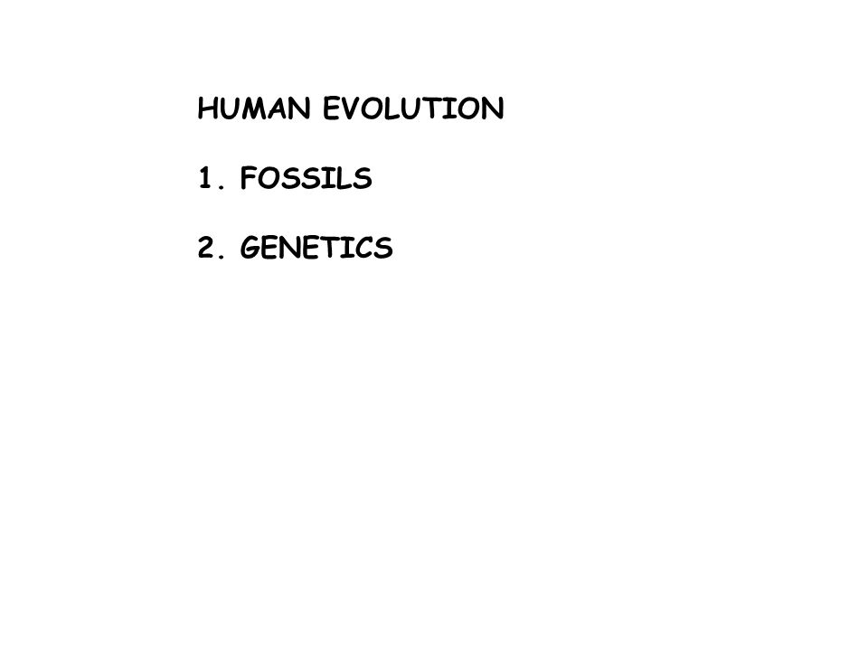 HUMAN EVOLUTION 1.FOSSILS 2.GENETICS