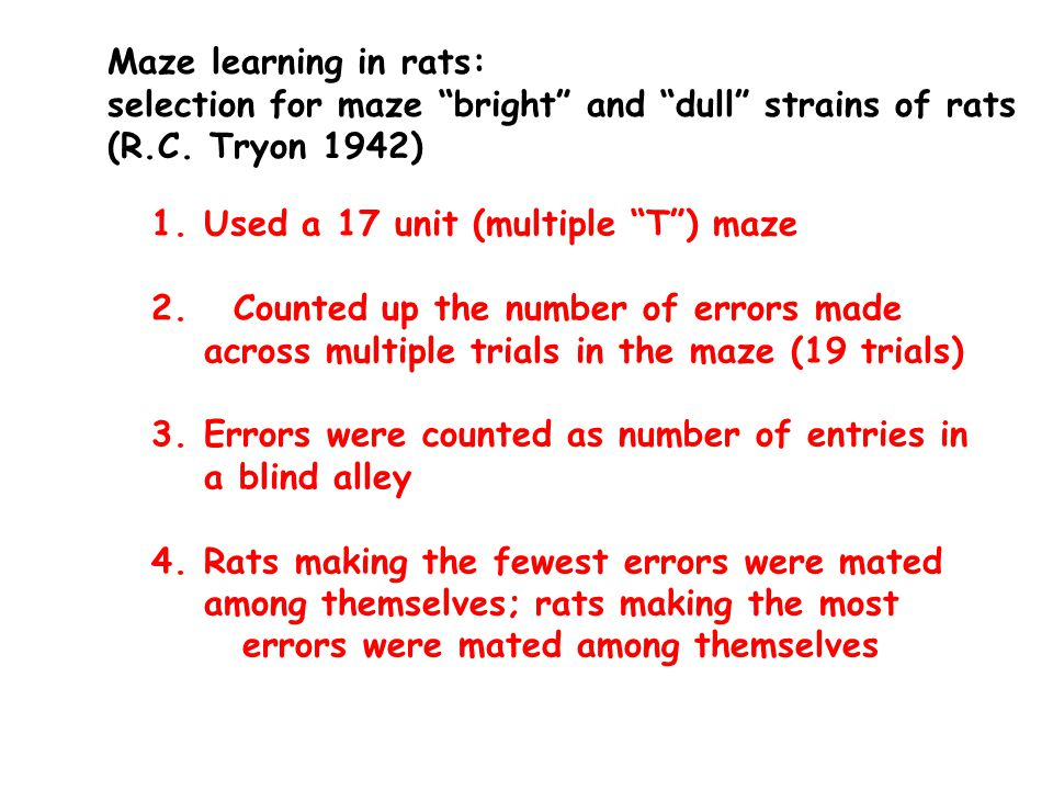 Number of errors in maze test