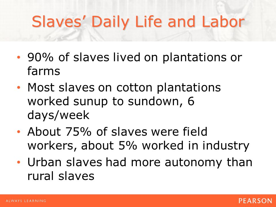 Slaves' Daily Life and Labor 90% of slaves lived on plantations or farms Most slaves on cotton plantations worked sunup to sundown, 6 days/week About 75% of slaves were field workers, about 5% worked in industry Urban slaves had more autonomy than rural slaves