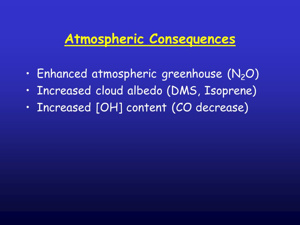 Atmospheric Consequences Enhanced atmospheric greenhouse (N 2 O) Increased cloud albedo (DMS, Isoprene) Increased [OH] content (CO decrease)