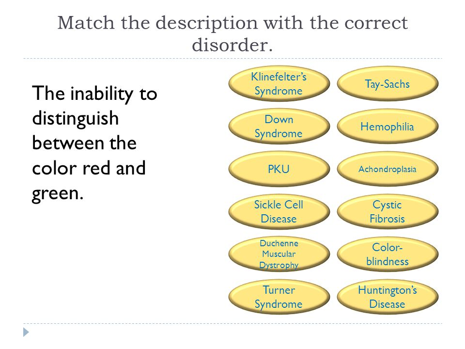Match the description with the correct disorder. The inability to distinguish between the color red and green. Tay-Sachs Hemophilia Achondroplasia Cys