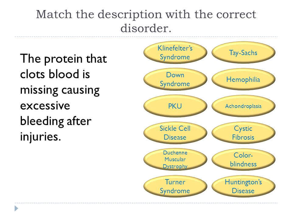 Match the description with the correct disorder. The protein that clots blood is missing causing excessive bleeding after injuries. Tay-Sachs Hemophil