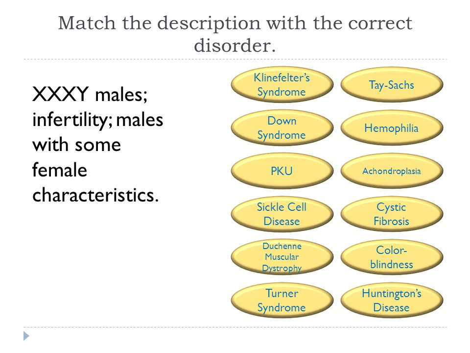Match the description with the correct disorder. XXXY males; infertility; males with some female characteristics. Tay-Sachs Hemophilia Achondroplasia