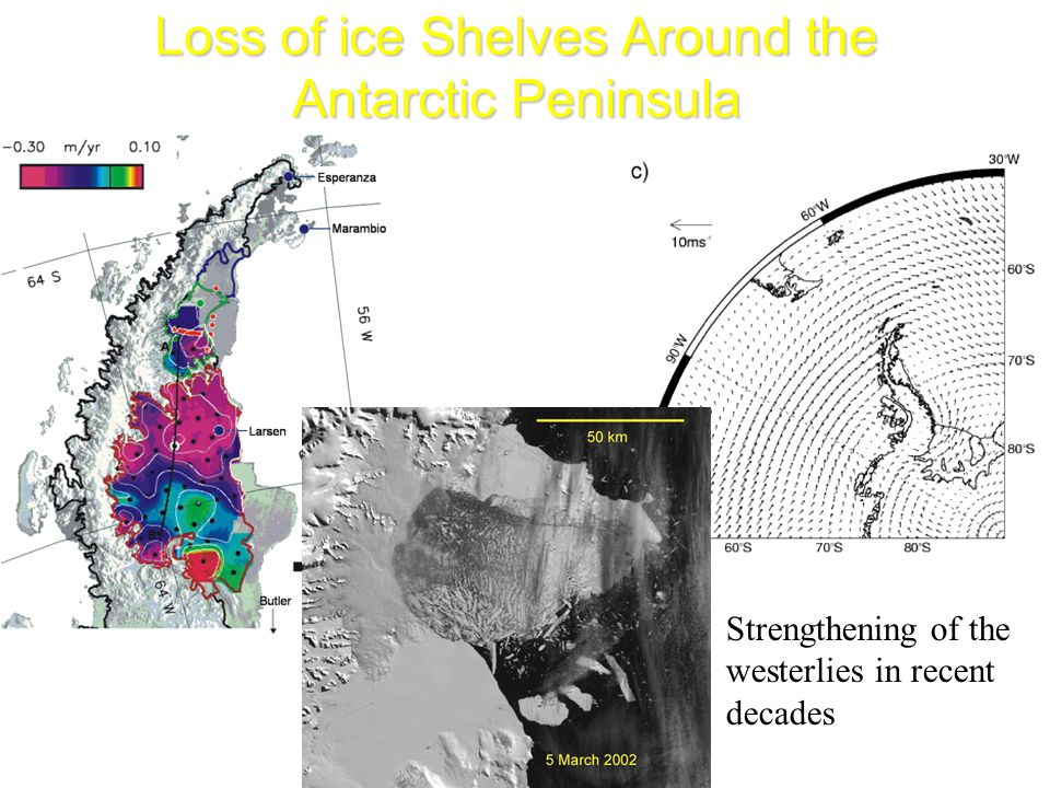 Loss of ice Shelves Around the Antarctic Peninsula Strengthening of the westerlies in recent decades