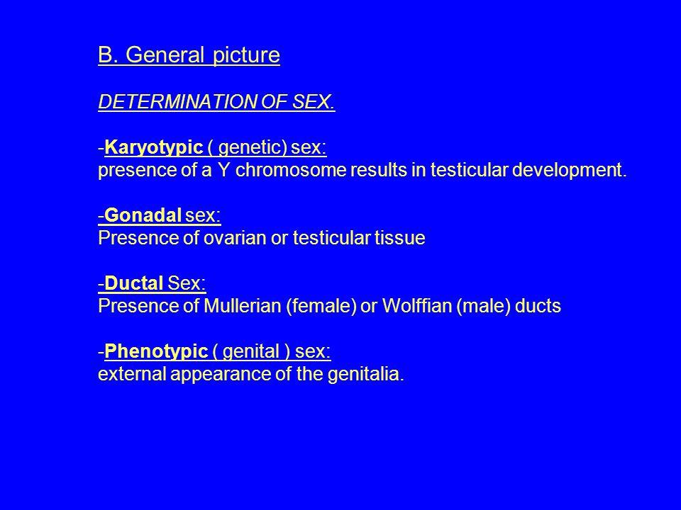 Turner Syndrome 1/5000 birth