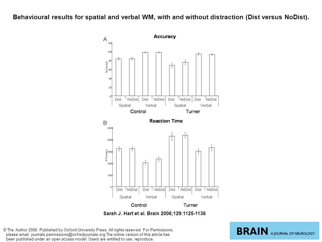 Behavioural results for spatial and verbal WM, with and without distraction (Dist versus NoDist). Sarah J. Hart et al. Brain 2006;129:1125-1136 © The