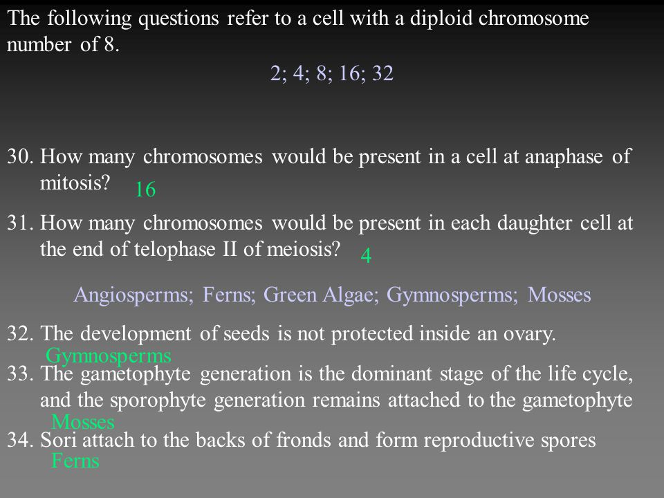 2; 4; 8; 16; 32 30.How many chromosomes would be present in a cell at anaphase of mitosis.