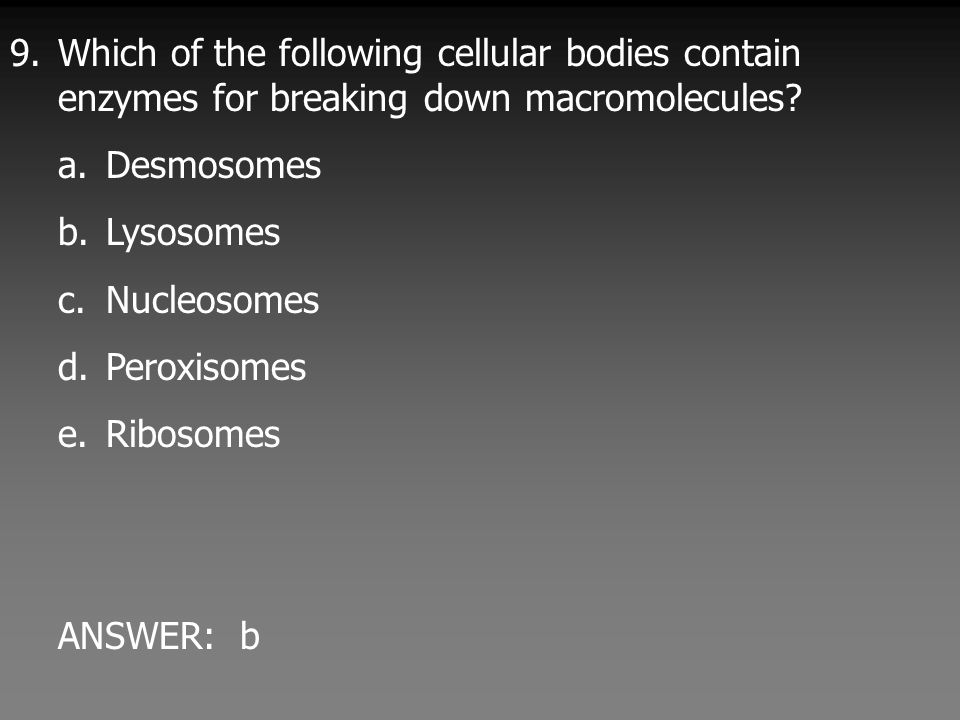9.Which of the following cellular bodies contain enzymes for breaking down macromolecules.