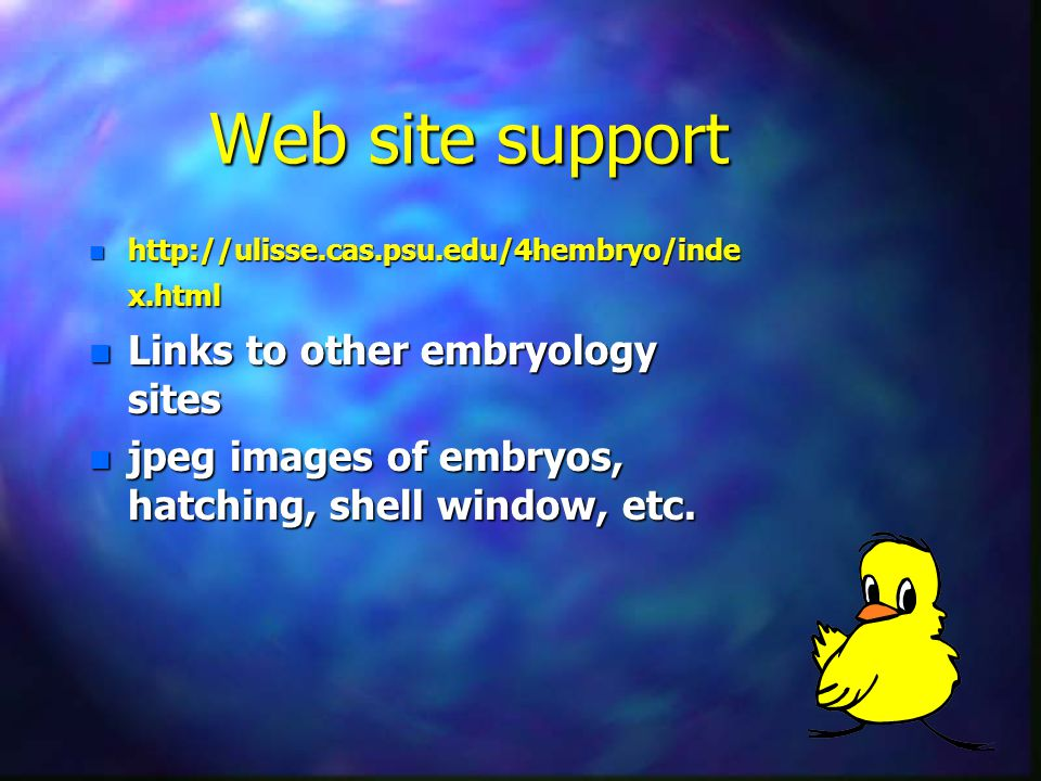 Web site support n http://ulisse.cas.psu.edu/4hembryo/inde x.html n Links to other embryology sites n jpeg images of embryos, hatching, shell window, etc.