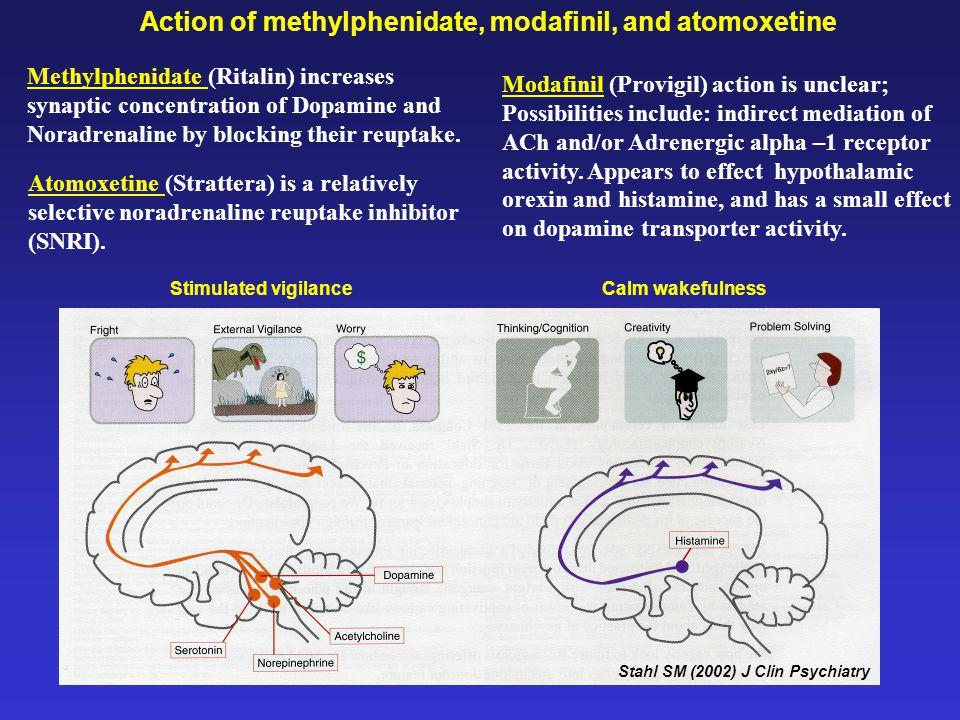 Stahl SM (2002) J Clin Psychiatry Calm wakefulness Action of methylphenidate, modafinil, and atomoxetine Methylphenidate (Ritalin) increases synaptic
