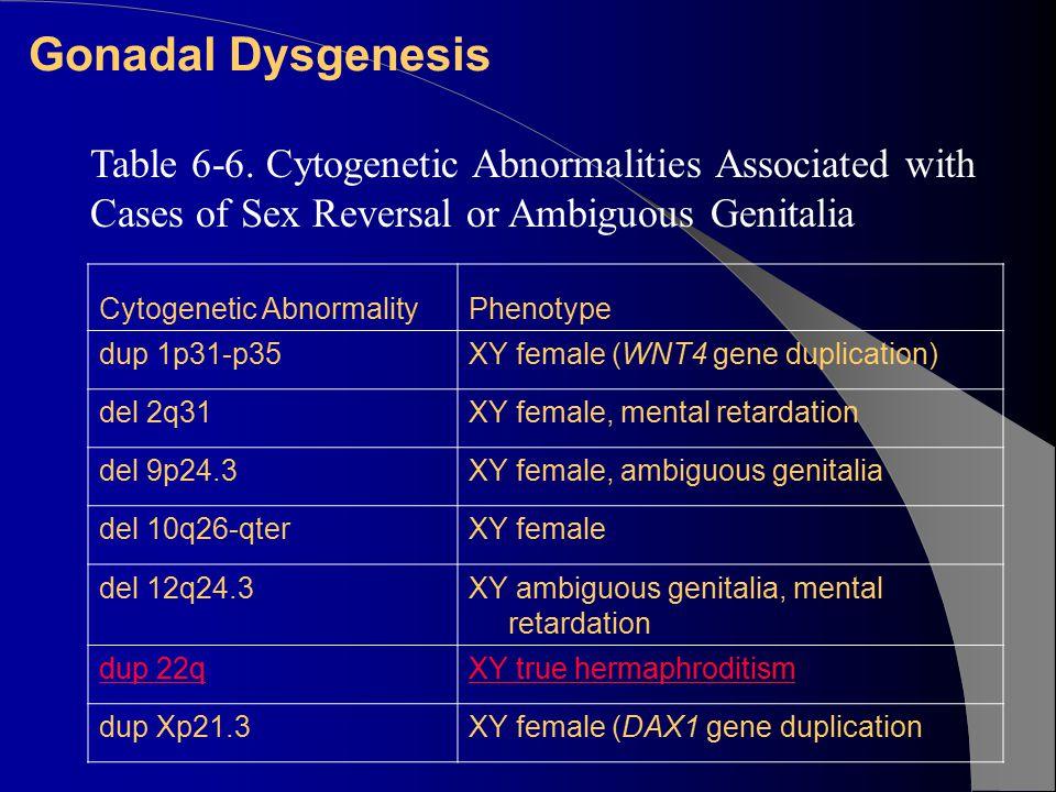 Gonadal Dysgenesis Cytogenetic AbnormalityPhenotype dup 1p31-p35XY female (WNT4 gene duplication) del 2q31XY female, mental retardation del 9p24.3XY female, ambiguous genitalia del 10q26-qterXY female del 12q24.3XY ambiguous genitalia, mental retardation dup 22qXY true hermaphroditism dup Xp21.3XY female (DAX1 gene duplication Table 6-6.