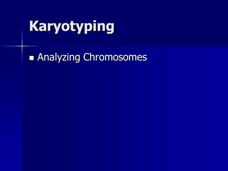 Karyotyping Analyzing Chromosomes Analyzing Chromosomes