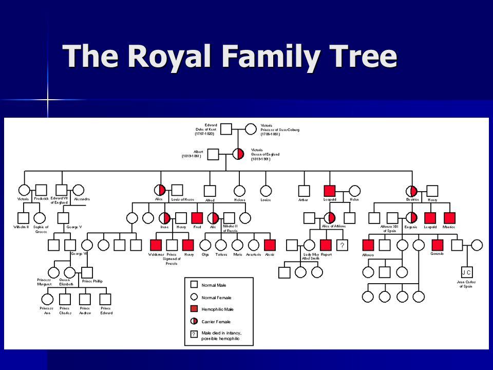 The Royal Family Tree