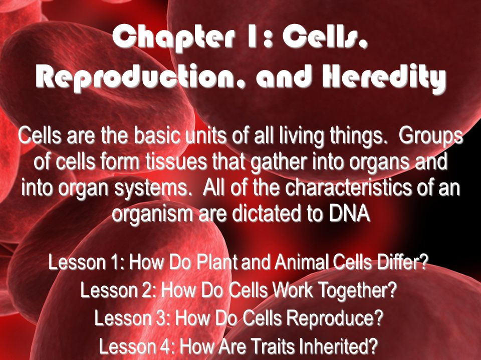Chapter 1: Cells, Reproduction, and Heredity Cells are the basic units of all living things.