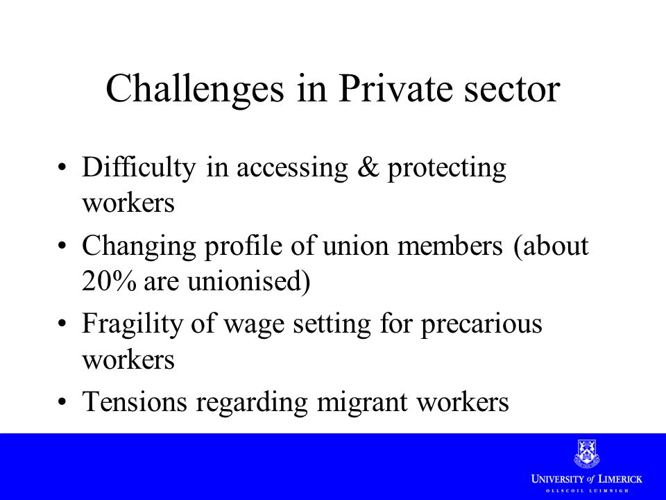 Challenges in Private sector Difficulty in accessing & protecting workers Changing profile of union members (about 20% are unionised) Fragility of wage setting for precarious workers Tensions regarding migrant workers