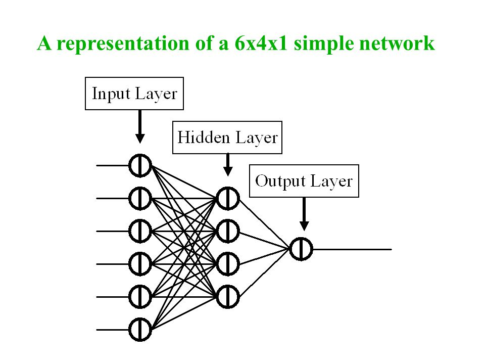 A representation of a 6x4x1 simple network
