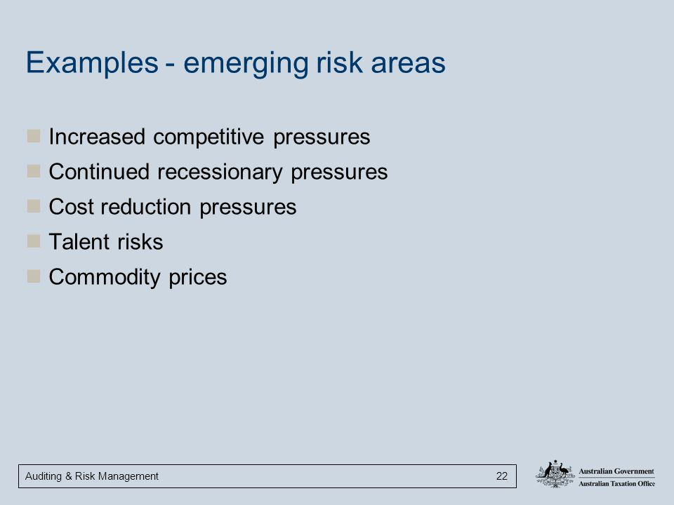 Auditing & Risk Management 22 Examples - emerging risk areas Increased competitive pressures Continued recessionary pressures Cost reduction pressures