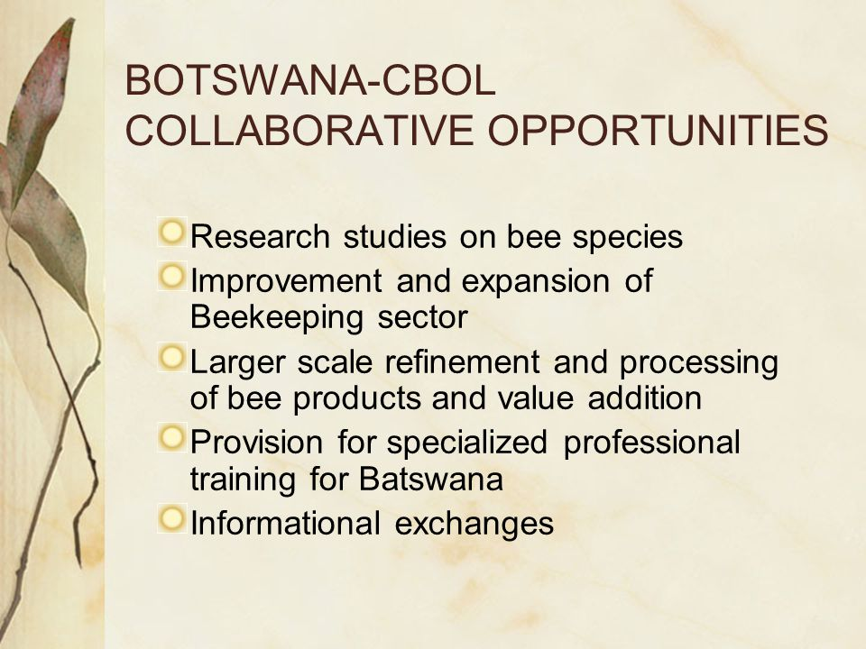 BOTSWANA-CBOL COLLABORATIVE OPPORTUNITIES Research studies on bee species Improvement and expansion of Beekeeping sector Larger scale refinement and processing of bee products and value addition Provision for specialized professional training for Batswana Informational exchanges