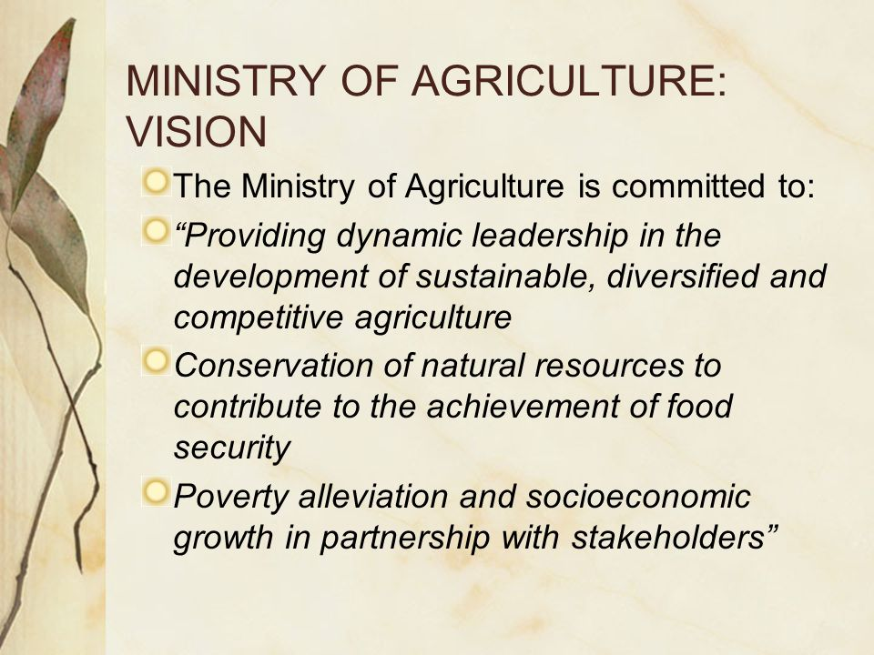 MINISTRY OF AGRICULTURE: MISSION To formulate and implement innovative policies, programs, regulatory frameworks To provide quality service to customers in order to promote a diversified, competitive and sustainable Agricultural sector through: Development and transfers of agricultural technology Control of diseases and pests of animals and plants Development of cooperatives and farmer's associations Conservation of agricultural resources