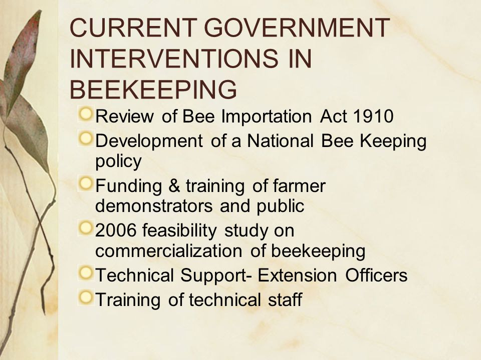 POTENTIAL FOR BEEKEEPING IN BOTSWANA Good potential exists for: Expansion of beekeeping Local and regional markets of bee- products Indigenous and exotic vegetation is suitable for a sustainable Industry