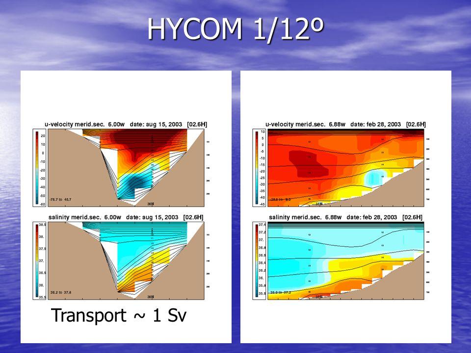 HYCOM 1/12º Transport ~ 1 Sv