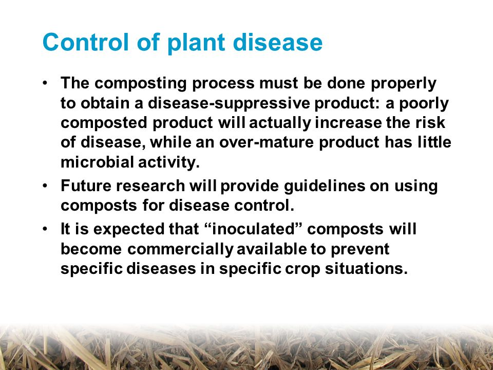Control of plant disease The composting process must be done properly to obtain a disease-suppressive product: a poorly composted product will actually increase the risk of disease, while an over-mature product has little microbial activity.