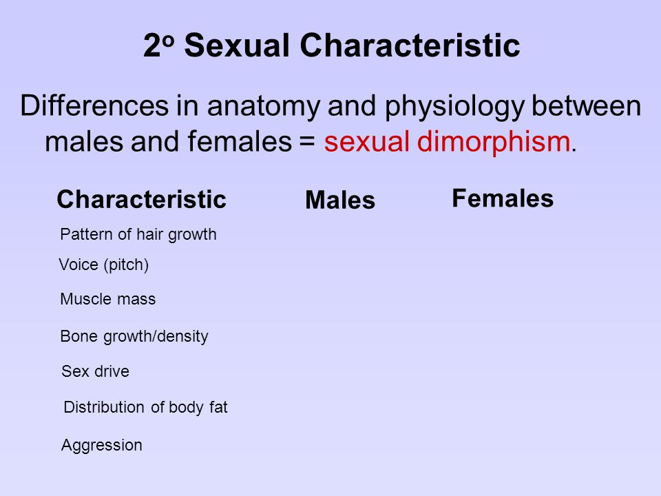 2 o Sexual Characteristic Differences in anatomy and physiology between males and females = sexual dimorphism. Males Females Pattern of hair growth Ch