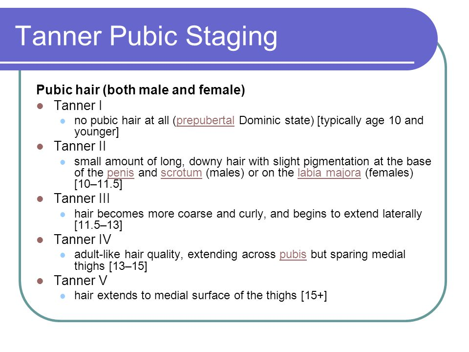 Tanner Pubic Staging Pubic hair (both male and female) Tanner I no pubic hair at all (prepubertal Dominic state) [typically age 10 and younger]prepube