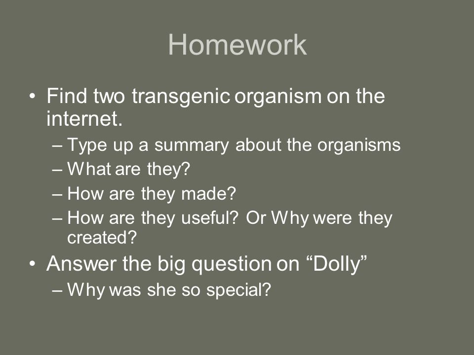 Homework Find two transgenic organism on the internet. –Type up a summary about the organisms –What are they? –How are they made? –How are they useful