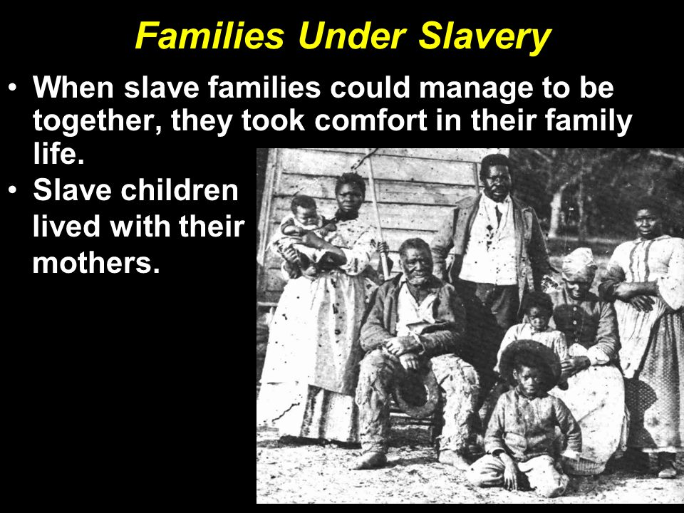 Families Under Slavery When slave families could manage to be together, they took comfort in their family life.