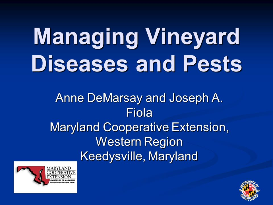 Managing Vineyard Diseases and Pests Anne DeMarsay and Joseph A.