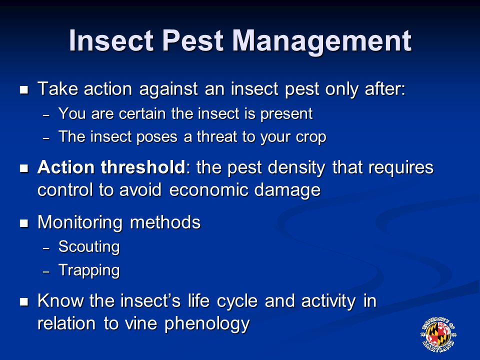 Insect Pest Management Take action against an insect pest only after: Take action against an insect pest only after: – You are certain the insect is present – The insect poses a threat to your crop Action threshold: the pest density that requires control to avoid economic damage Action threshold: the pest density that requires control to avoid economic damage Monitoring methods Monitoring methods – Scouting – Trapping Know the insect's life cycle and activity in relation to vine phenology Know the insect's life cycle and activity in relation to vine phenology
