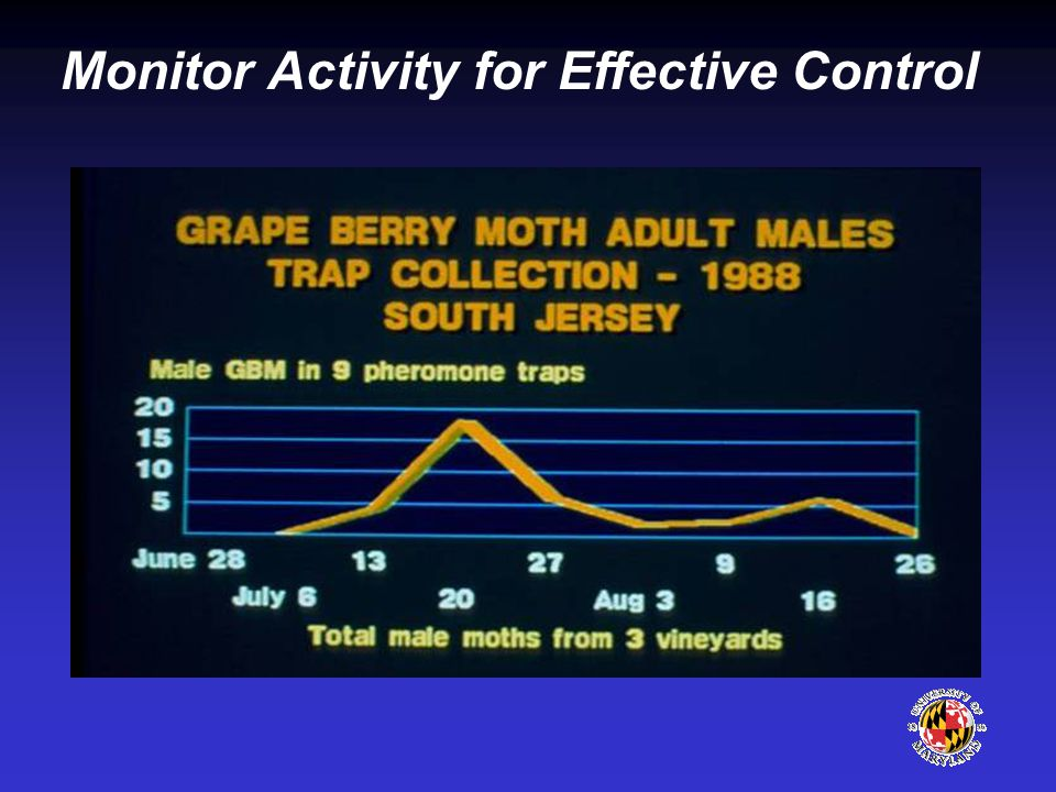 Monitor Activity for Effective Control