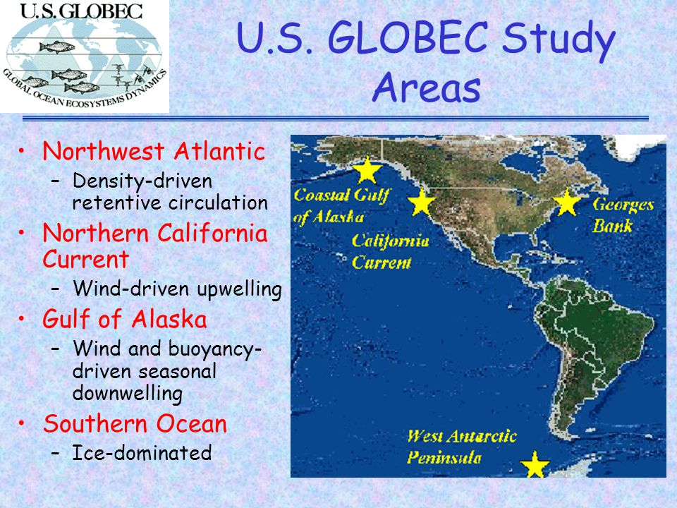 GLOBEC Northeast Pacific http://globec.oce.orst.edu/groups/nep/ Focus on oceanic ecosystems supporting salmon in the Northeast Pacific Ocean Northern California Current –Eastern Boundary Current –Seasonal wind-driven upwelling –Field seasons off Oregon coast in 2000, 2002 Coastal Gulf of Alaska –Predominantly downwelling –Circulation forced by freshwater input and wind –Field seasons in 2001, 2003