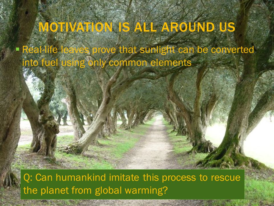 MOTIVATION IS ALL AROUND US  Real-life leaves prove that sunlight can be converted into fuel using only common elements Q: Can humankind imitate this process to rescue the planet from global warming?
