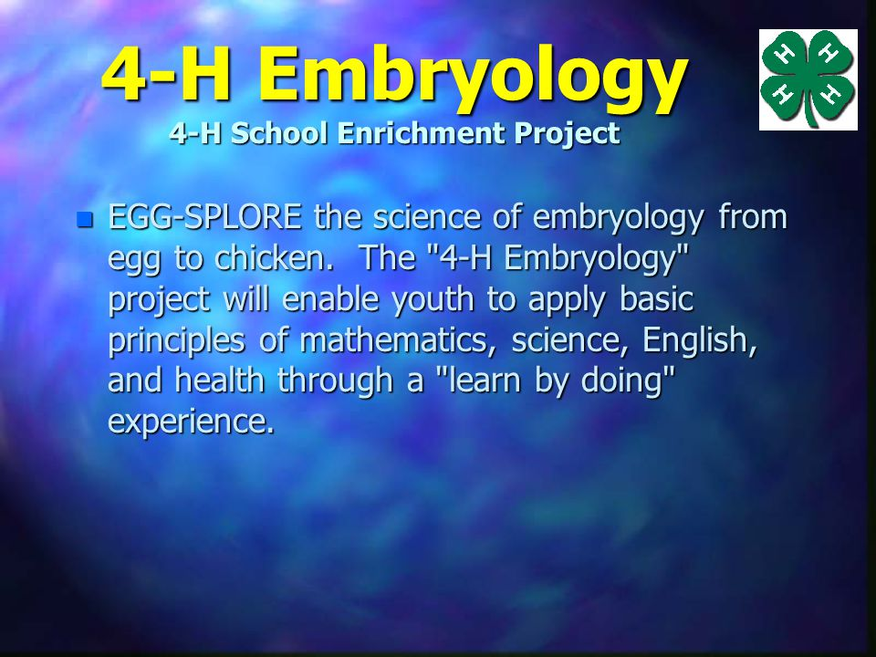 4-H Embryology 4-H School Enrichment Project Youth will learn by listening, observing, experimenting, and applying their knowledge to a real-world situation.