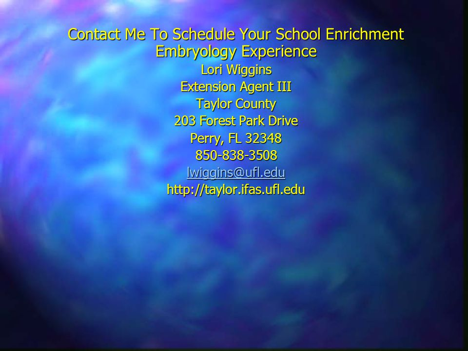 Contact Me To Schedule Your School Enrichment Embryology Experience Lori Wiggins Extension Agent III Taylor County 203 Forest Park Drive Perry, FL 32348 850-838-3508 lwiggins@ufl.edu http://taylor.ifas.ufl.edu